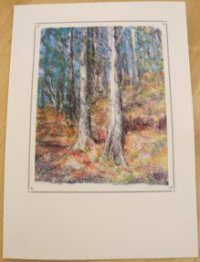 'Pine Forest' notelet